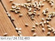 Купить «close up of malt or cereal grains», фото № 24132483, снято 6 сентября 2016 г. (c) Syda Productions / Фотобанк Лори