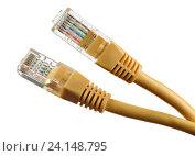 Купить «Сетевой кабел, изолированный на белом фоне», фото № 24148795, снято 28 октября 2016 г. (c) Александр Лычагин / Фотобанк Лори