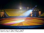 Купить «Арена цирка», фото № 24152247, снято 9 июня 2014 г. (c) Татьяна Белова / Фотобанк Лори