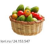 Огурцы и помидоры. Стоковое фото, фотограф LightLada / Фотобанк Лори