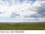 Летняя степь с голубым небом и облаками. Стоковое фото, фотограф Ирина Мещерякова / Фотобанк Лори