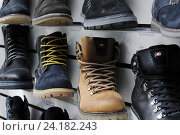 Купить «Мужские зимние ботинки разного цвета стоят на витрине магазина», эксклюзивное фото № 24182243, снято 9 ноября 2016 г. (c) Игорь Низов / Фотобанк Лори