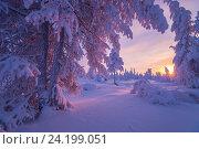 Купить «Зимний пейзаж на закате», фото № 24199051, снято 10 января 2015 г. (c) Оксана Владимировна Грачева / Фотобанк Лори