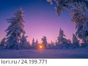 Купить «Зимний пейзаж на закате в тундре», фото № 24199771, снято 13 декабря 2015 г. (c) Оксана Владимировна Грачева / Фотобанк Лори