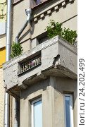 Купить «Четырёх-пятиэтажный двухподъездный кирпичный жилой дом, построен в 1926 году. Пречистенка, 26. Район Хамовники. Москва», эксклюзивное фото № 24202499, снято 17 июля 2016 г. (c) lana1501 / Фотобанк Лори