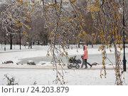 Купить «Мама идет с детьми вдоль берега замершего пруда в зимнем парке города Москвы, Россия», фото № 24203879, снято 11 ноября 2016 г. (c) Николай Винокуров / Фотобанк Лори