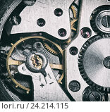 Купить «Часовой механизм», фото № 24214115, снято 10 ноября 2016 г. (c) Александр Лычагин / Фотобанк Лори