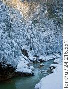 Купить «Зимнее утро в ущелье Гуам», фото № 24216551, снято 14 января 2015 г. (c) Анна Костенко / Фотобанк Лори