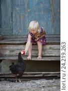 Девочка кормит курицу яблоком. Стоковое фото, фотограф Светлана Андриянкина / Фотобанк Лори