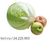 Кочан капусты и яблоки. Стоковое фото, фотограф LightLada / Фотобанк Лори