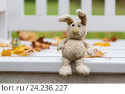 Купить «toy rabbit on bench in autumn park», фото № 24236227, снято 12 октября 2016 г. (c) Syda Productions / Фотобанк Лори