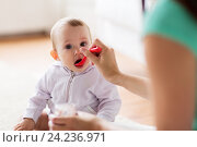 Купить «mother with spoon feeding little baby at home», фото № 24236971, снято 12 июля 2016 г. (c) Syda Productions / Фотобанк Лори