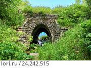 Купить «Старый арочный мостик на Кругобайкальской железной дороге», фото № 24242515, снято 27 июля 2016 г. (c) Виктор Никитин / Фотобанк Лори