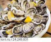Купить «oysters on plate top view», фото № 24249831, снято 21 октября 2018 г. (c) Яков Филимонов / Фотобанк Лори