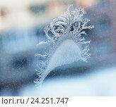 Купить «Снежные узоры на стекле», фото № 24251747, снято 21 ноября 2018 г. (c) Елена Вишневская / Фотобанк Лори