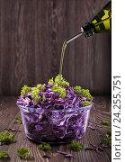 Растительное масло наливают в салат из красной капусты. Стоковое фото, фотограф Анастасия Богатова / Фотобанк Лори