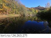 Купить «Осенний лес и гора отражаются в воде озера. Южная Демерджи, Крым», эксклюзивное фото № 24263271, снято 20 октября 2016 г. (c) Яна Королёва / Фотобанк Лори