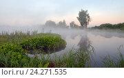 Купить «Туманный летний пейзаж в Московской области», фото № 24271535, снято 4 июня 2016 г. (c) Валерий Боярский / Фотобанк Лори