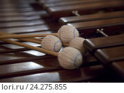 Купить «Палочки лежат на ударном музыкальном инструменте Маримба», фото № 24275855, снято 26 ноября 2016 г. (c) Николай Винокуров / Фотобанк Лори