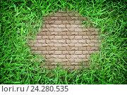 Кирпичный фон, окруженный травой, абстрактный фон. Стоковое фото, фотограф Юлия Дьякова / Фотобанк Лори