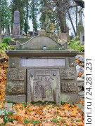 Купить «Старые надгробия на католическом кладбище. Львов, Украина», фото № 24281231, снято 10 ноября 2016 г. (c) Вдовиченко Денис / Фотобанк Лори