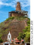 Купить «Древняя ланкийская Дагоба Абхайягири в Анурадхапуре Шри Ланка в реставрационных строительных лесах Abhayagiri Dagoba Anuradhapura Sri Lanka», фото № 24281259, снято 3 ноября 2009 г. (c) Эдуард Паравян / Фотобанк Лори