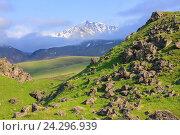 Купить «Зеленый холм с камнями и пик Балык Субаши (3932 м) на Кавказе», фото № 24296939, снято 28 июня 2016 г. (c) Михаил Кочиев / Фотобанк Лори