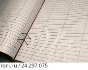 Журнал бухгалтерского учета. Стоковое фото, фотограф Oleksandr Khalimonov / Фотобанк Лори
