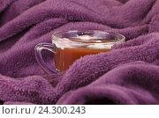 Горячий шоколад, уютное вязанные одеяло. Стоковое фото, фотограф Дегтярева Виктория / Фотобанк Лори