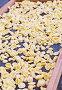 """Итальянская паста традиционной формы """"ушки"""" (orecchiette – ореккьетте) ручного приготовления сушится на сетчатом поддоне во дворе города Бари (малая глубина резкости), фото № 24301347, снято 3 октября 2016 г. (c) Виктория Катьянова / Фотобанк Лори"""