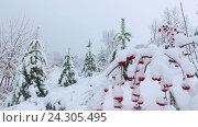 Купить «Panoramic video of park under snow in winter season», видеоролик № 24305495, снято 5 ноября 2016 г. (c) Serg Zastavkin / Фотобанк Лори