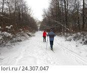 Купить «Зимний парк с лыжниками», эксклюзивное фото № 24307047, снято 6 февраля 2016 г. (c) Елена Осетрова / Фотобанк Лори