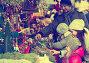 Family buying flower for Christmas, фото № 24307991, снято 3 декабря 2016 г. (c) Яков Филимонов / Фотобанк Лори
