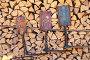 Три прялки на поленнице, эксклюзивное фото № 24308875, снято 12 ноября 2016 г. (c) Анатолий Матвейчук / Фотобанк Лори