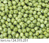 Купить «Peas, green, Pisum sativum, pea, pea, vegetable peas, garden peas, legumes, vegetables, vegetable peas, product photography, only», фото № 24315251, снято 11 мая 2005 г. (c) mauritius images / Фотобанк Лори