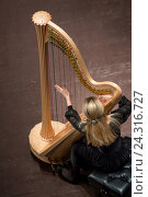 Купить «Девушка играет на музыкальном инструменте арфе, который стоит на сцене концертного зала», фото № 24316727, снято 4 декабря 2016 г. (c) Николай Винокуров / Фотобанк Лори