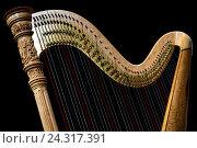 Купить «Музыкальный инструмент арфа стоит на сцене концертного зала», фото № 24317391, снято 4 декабря 2016 г. (c) Николай Винокуров / Фотобанк Лори