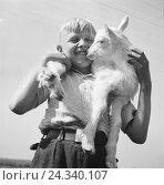 Купить «Kinder spielen mit einem Lamm, Deutschland 1930er Jahre. Children playing with a little lamb, Germany 1930s.», фото № 24340107, снято 23 июля 2018 г. (c) mauritius images / Фотобанк Лори
