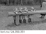 Купить «Die Knipser Vierlinge beim Spielen, Deutschland 1930er Jahre. The Knipser's quadruplet girls playing at the garden, Germany 1930s», фото № 24350351, снято 23 июля 2018 г. (c) mauritius images / Фотобанк Лори