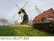 Купить «Smock Mill in Bockwitz near the city of Zeitz, Burgenlandkreis, Saxony-Anhalt, Germany», фото № 24371823, снято 22 июля 2018 г. (c) mauritius images / Фотобанк Лори