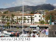 Купить «Madeira, view on Funchal», фото № 24372143, снято 16 июля 2018 г. (c) mauritius images / Фотобанк Лори