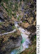 Купить «Course of a stream in the Almbachklamm (gorge)», фото № 24379543, снято 16 августа 2018 г. (c) mauritius images / Фотобанк Лори