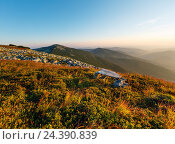 Купить «Summer morning mountain view (Carpathian, Ukraine).», фото № 24390839, снято 21 августа 2016 г. (c) Юрий Брыкайло / Фотобанк Лори