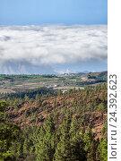 Купить «Вид на побережье острова Тенерифе и облака над морем с высоты горного хребта. Канары, Испания», фото № 24392623, снято 6 января 2016 г. (c) Кекяляйнен Андрей / Фотобанк Лори