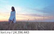 Купить «Young girl in summer field», видеоролик № 24396443, снято 6 декабря 2016 г. (c) Raev Denis / Фотобанк Лори