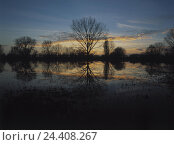 Купить «Germany, Rhine meadows, autumn, evening mood, Europe, the Rhine, branch, river scenery, waters, trees, shrubs, leafless, mirroring, water surface, nature...», фото № 24408267, снято 5 марта 2003 г. (c) mauritius images / Фотобанк Лори