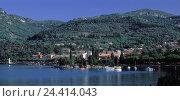 Купить «Italy, Gardasee, Garda, local view, castle Trutz, Europe, Southern, Europe, Northern Italy, Oberitalien, Lago Tu Garda, olive Riviera, olive grove, olive...», фото № 24414043, снято 17 мая 2001 г. (c) mauritius images / Фотобанк Лори