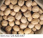 Купить «Walnuts, whale groove, walnut, nuts, nut, Juglans, core, semen, product photography, only», фото № 24420647, снято 11 мая 2005 г. (c) mauritius images / Фотобанк Лори