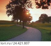 Купить «Country road, trees, sundown, outside, Germany, Allgäu, street, design and lay-out of a road, winding, bends, meadows, meadow, scenery, the sun, evening, evening light, evening mood, mood», фото № 24421807, снято 15 апреля 2002 г. (c) mauritius images / Фотобанк Лори