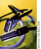 Купить «Computer connection, connector, SCSI connector, two, connections, cable plugs, connection, cable, plug connection, electronics,», фото № 24423703, снято 3 мая 2001 г. (c) mauritius images / Фотобанк Лори